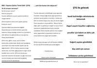 thumb_Türkisch-Flyer-temel-gelir